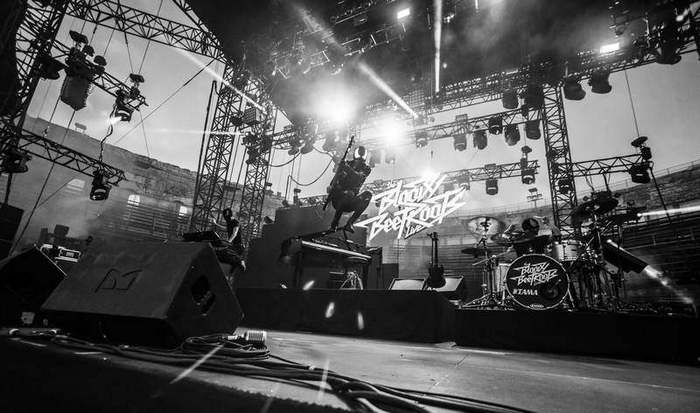 THE BLOODY BEETROOTS Live - photographe professionnel festival