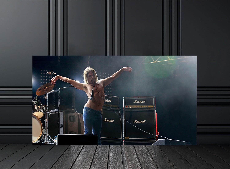 Vente photos de concert d'Iggy Pop - Crédit photo Eric CANTO