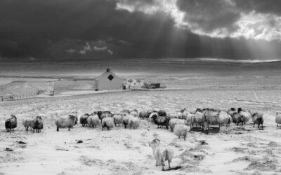 Photos noir et blanc : le guide en 7 points
