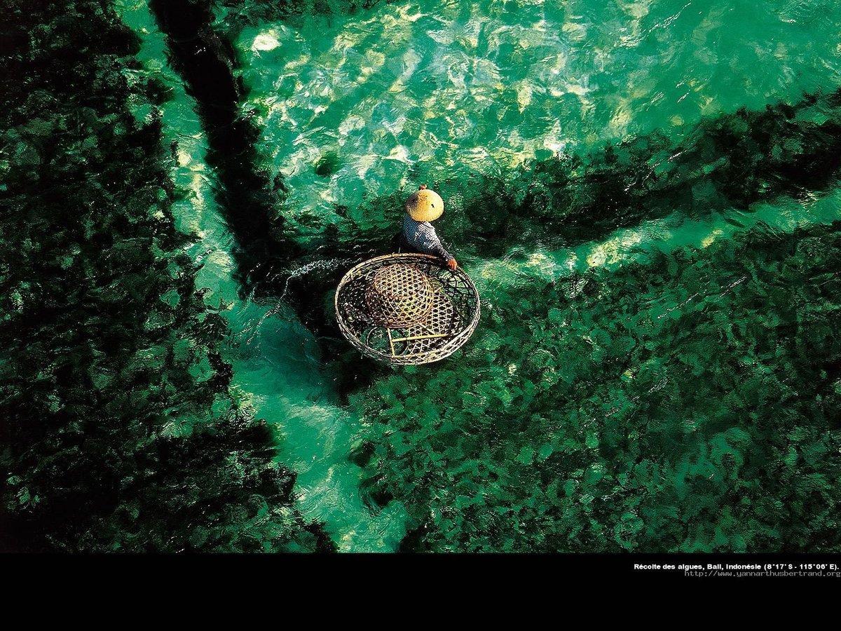 Yann Arthus-Bertrand Exposition Legacy