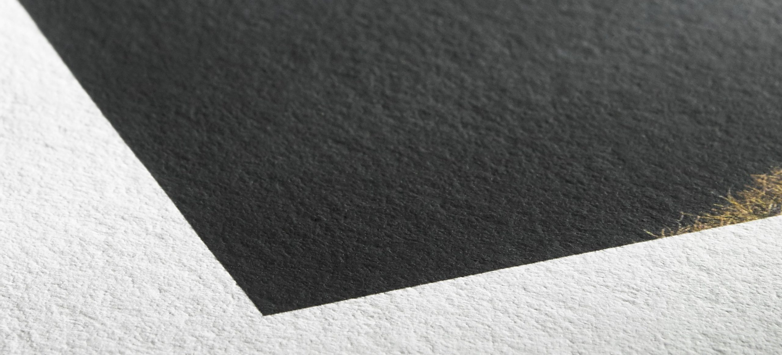 csm Hahnemuehle Detail Photo Rag Bright White d6f5c4023d scaled